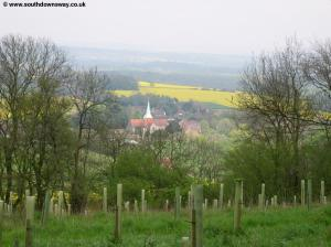 South Harting from Harting Downs